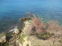 Cala Petrolo - 5 marzo 2012  - Castellammare del golfo (791 clic)
