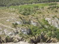 panorama area archeologica - 5 agosto 2012  - Segesta (670 clic)