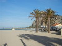 palme sulla spiaggia e Monte Monaco - 9 maggio 2012  - San vito lo capo (334 clic)