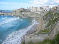 scorcio della città, spiaggia Praiola e mare mosso - 15 aprile 2012  - Terrasini (1188 clic)