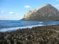 Baia di Cornino e Monte Cofano (761 clic)