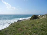 panorama costiero e mare in tempesta - 8 aprile 2012  - Macari (759 clic)