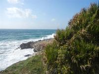panorama costiero e mare in tempesta - 8 aprile 2012  - Macari (623 clic)