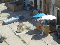 lo scaro marittimo - particolare - 11 agosto 2012  - Trappeto (621 clic)