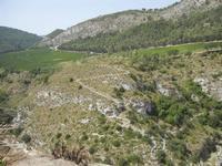 panorama area archeologica - 5 agosto 2012  - Segesta (693 clic)