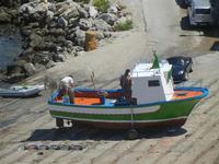 lo scaro marittimo - particolare - 11 agosto 2012  - Trappeto (1145 clic)