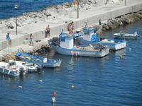 il porto - 11 agosto 2012  - Trappeto (659 clic)