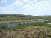 SIRIGNANO - Agriturismo - laghetto artificiale - 1 maggio 2012  - Monreale (1070 clic)