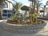 giardino pubblico - 9 maggio 2012  - San vito lo capo (318 clic)