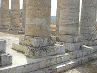 il tempio - 5 agosto 2012  - Segesta (885 clic)