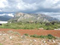 Riserva Naturale Orientata Capo Rama - 15 aprile 2012  - Terrasini (595 clic)