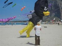 4° Festival Internazionale degli Aquiloni - 24 maggio 2012  - San vito lo capo (599 clic)