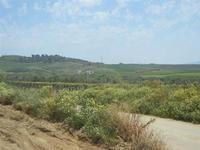 SIRIGNANO - Agriturismo - panorama agreste - 1 maggio 2012  - Monreale (534 clic)