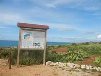 Riserva Naturale Orientata Capo Rama - 15 aprile 2012  - Terrasini (742 clic)