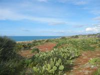 Riserva Naturale Orientata Capo Rama - 15 aprile 2012  - Terrasini (1053 clic)