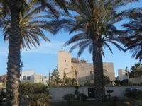il Santuario dedicato a San Vito Martire visto dal lungomare - 9 maggio 2012  - San vito lo capo (386 clic)