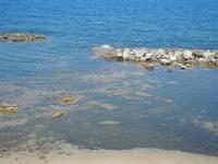 vista sul mare dal Belvedere - 11 agosto 2012  - Trappeto (549 clic)