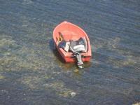 barca ormeggiata nell'acqua bassa - 11 agosto 2012  - Trappeto (533 clic)