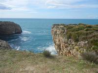 Riserva Naturale Orientata Capo Rama - Cala Porro - 15 aprile 2012  - Terrasini (877 clic)