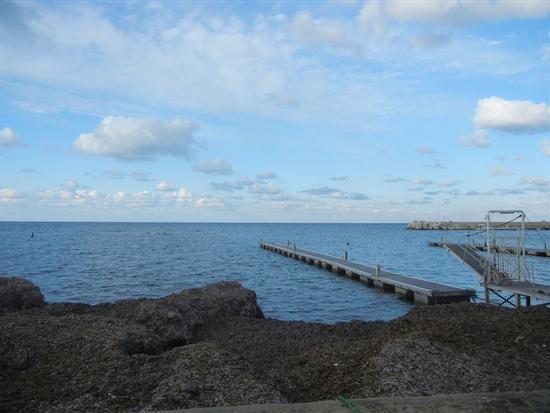 cumuli di alghe e pontili mobili - BONAGIA - inserita il 07-Apr-14