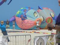 4° Festival Internazionale degli Aquiloni - 24 maggio 2012   - San vito lo capo (296 clic)