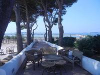 giardino sullo Stagnone - C.da Ettore Infersa - 9 settembre 2012  - Marsala (427 clic)