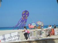 4° Festival Internazionale degli Aquiloni - 24 maggio 2012   - San vito lo capo (260 clic)