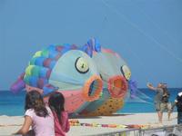 4° Festival Internazionale degli Aquiloni - 24 maggio 2012   - San vito lo capo (320 clic)