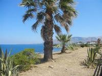 panorama costiero e Golfo di Castellammare - 11 agosto 2012  - Trappeto (512 clic)