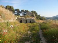 ruderi Castello Eufemio con papaveri - 2 giugno 2012  - Calatafimi segesta (433 clic)