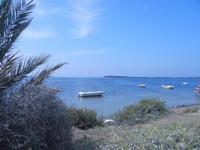 Lo Stagnone C/da Birgi Vecchi - 9 settembre 2012  - Marsala (377 clic)