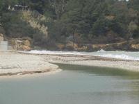la foce del fiume Baia di Guidaloca - 11 marzo 2012  - Castellammare del golfo (355 clic)