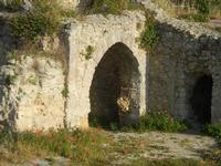 ruderi Castello Eufemio con papaveri - 2 giugno 2012  - Calatafimi segesta (354 clic)