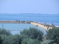 giardino sullo Stagnone - C.da Ettore Infersa - 9 settembre 2012  - Marsala (967 clic)
