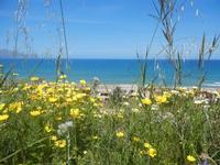 Zona Plaja - panorama sul Golfo di Castellammare - 25 aprile 2012  - Alcamo marina (658 clic)