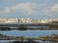Oasi Naturale Orientata Saline di Trapani e Paceco - all'orizzonte la città di Trapani - 15 gennaio 2012  - Nubia (485 clic)