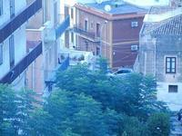 alberi e case - 16 settembre 2012  - Castellammare del golfo (243 clic)