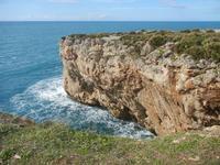 Riserva Naturale Orientata Capo Rama - Cala Porro - 15 aprile 2012  - Terrasini (1641 clic)