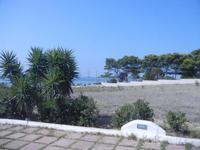 giardino sullo Stagnone - C.da Ettore Infersa - 9 settembre 2012  - Marsala (1369 clic)
