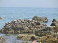 Cala Mazzo di Sciacca - 11 luglio 2012  - Castellammare del golfo (201 clic)