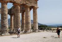il tempio - 5 agosto 2012 - Foto di Nicolò Pecoraro  - Segesta (1511 clic)