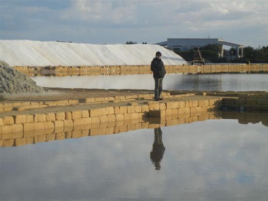 Oasi Naturale Orientata Saline di Trapani e Paceco - NUBIA - inserita il 17-Mar-14