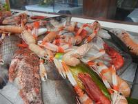 pesci in vetrina - La Cambusa - 11 marzo 2012  - Castellammare del golfo (564 clic)