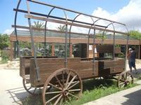 BIOPARCO di Sicilia - Far West - 17 luglio 2012  - Villagrazia di carini (438 clic)