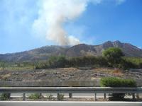 incendio su Monte Inici - 16 luglio 2012  - Segesta (532 clic)