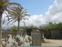 BIOPARCO di Sicilia - 17 luglio 2012  - Villagrazia di carini (468 clic)