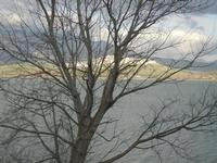 Lago Arancio - 26 febbraio 2012  - Sambuca di sicilia (842 clic)