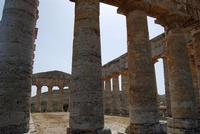 il tempio - 5 agosto 2012 - Foto di Nicolò Pecoraro  - Segesta (1137 clic)