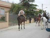SPERONE - sfilata di cavalli - festa San Giuseppe Lavoratore - 29 aprile 2012  - Custonaci (471 clic)