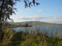 Lago Arancio - 26 febbraio 2012  - Sambuca di sicilia (955 clic)